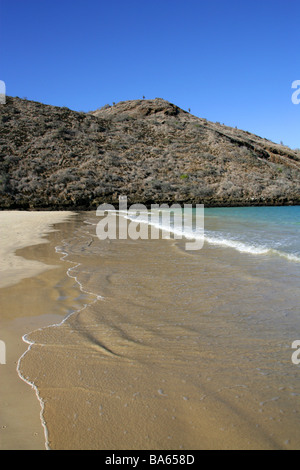 Punta Cormorant Beach, Floreana Island, Galapagos Islands, Ecuador, South America - Stock Image