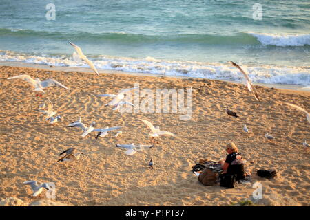 Cannes, Alpes Maritimes, 06, PACA, France - Stock Image