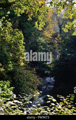 The Auldhouse burn falls into the deep dark gorge over the falls in Rouken Glen park during Autumn in East Renfrewshire, Scotland, UK, Europe - Stock Image