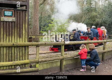 Families enjoying rides on the miniature steam trains and railway at Frimley Lodge Park, Frimley, Surrey, UK - Stock Image