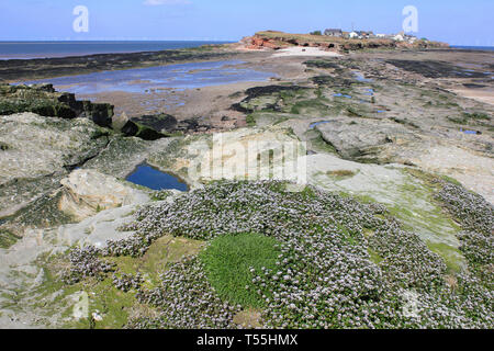 View across to Hilbre Island from Middle Eye, Dee Estuary, Wirral, UK - Stock Image