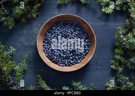 Juniper berries on and beside wooden bowl. Fresh juniper berries and branches. - Stock Image