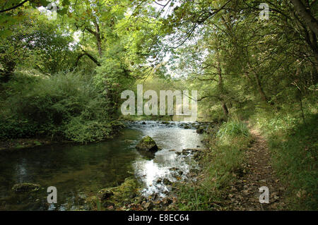 River Wye in Miller's Dale, Derbyshire, Peak District - Stock Image
