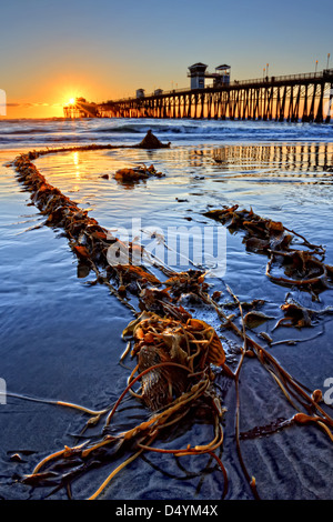 Oceanside pier, captured on an extremely low tide evening. - Stock Image