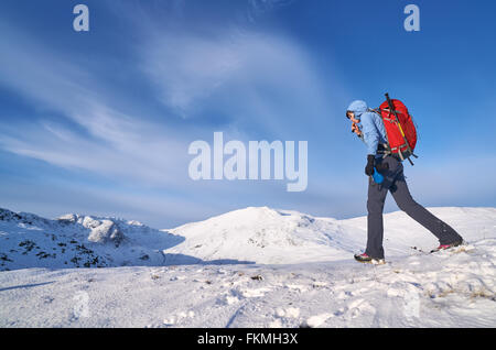 Hiker taking a drink on Hartsop Above How that leads towards Hart Crag. English Lake District. - Stock Image