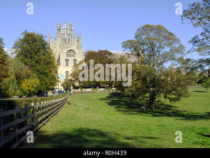 View of the magnificent Ely Cathedral in Ely, Cambridgeshire from The Deans Meadow showing the Gothic splendour ot this medieval masterpiece. - Stock Image