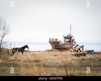 LYSTVIANKA, RUSSIE, MAI 15 : En face des montagnes de Biouratie, un cheval se repose face au bateau abandonné - Stock Image