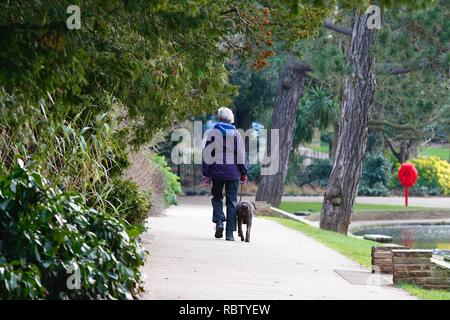 Hastings, East Sussex, UK. 12 Jan, 2019. UK Weather: Winter weather with a slight breeze in the air that is expected to last throughout the day as a few people take a morning stroll around Alexandra park in the heart of Hastings in East Sussex. © Paul Lawrenson 2018, Photo Credit: Paul Lawrenson / Alamy Live News - Stock Image