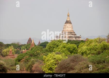View of temples, Old Bagan village area, Mandalay region, Myanmar, Asia - Stock Image