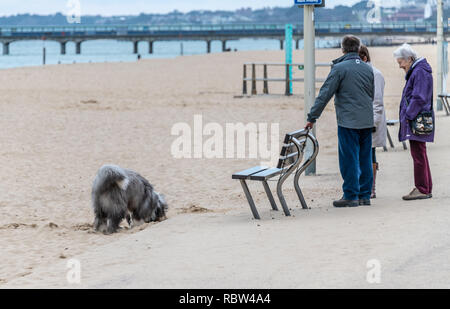 Bournemouth, Dorset, UK. 12th January 2019. Dog walkers wrap up warm to take their dogs out on the beach in Bournemouth on a winters day. Credit: Thomas Faull/Alamy Live News - Stock Image