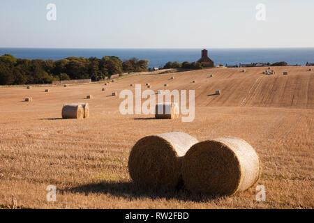 View across golden field of round straw bales to village church on east coast. St Abbs, Berwickshire, Scottish Borders, Scotland, UK, Britain - Stock Image