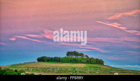 Minninglow, Peak District. 24th Sep 2018. UK Weather: Amazing sunset over Minninglow in the Peak District National Park, the clump of trees crowning the hill are Neolithic chambered tombs and Bronze Age bowl barrows Credit: Doug Blane/Alamy Live News - Stock Image
