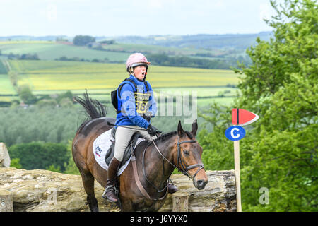 With a look of surprise on her face, Clare Chamberlayne on her horse Sandro IX clears a tree trunk obstacle with - Stock Image