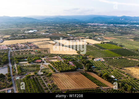 top view of crop fields near of the mountains in Tarragona, green field agriculture industry aerial view - Stock Image