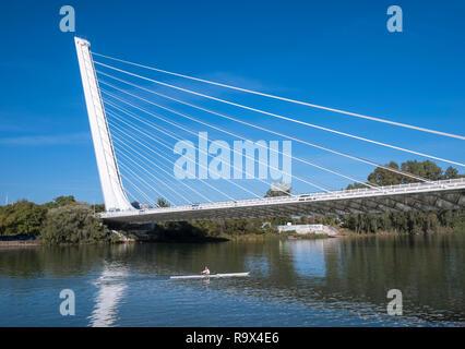The Puente del Alamillo bridge crossing the Canal de Alfonso XIII, Seville, Spain. - Stock Image