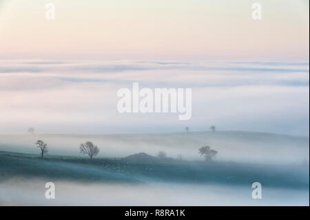 On the border between England and Wales near Knighton, Powys, UK. Early morning view over Herefordshire showing the valleys filled with thick fog - Stock Image