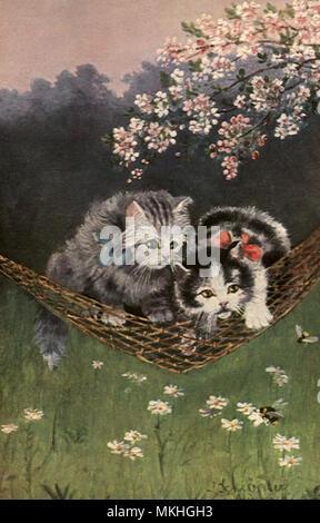 Kittens in a Hammock under Cherry Tree - Stock Image