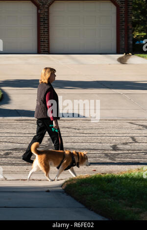 A middle-aged Caucasian woman walking a dog on a neighborhood street in autumn weather. USA. - Stock Image