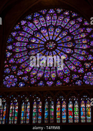 Rose of Notre dame de Paris in France - Stock Image