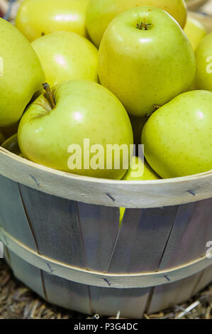 Vertical close-up shot of a rustic wooden bucket filled to the top with ripe golden delicious apples, at the Farmer's market - Stock Image