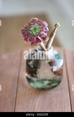 Close-up of a flower vase on a table - Stock Image
