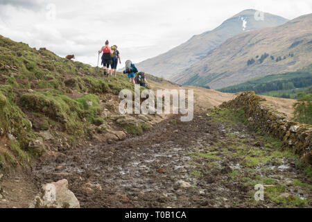 West Highland Way walkers avoiding mud and cow manure on section of footpath before Crianlarich known as cow pat alley in 2018 - reparwork  has since - Stock Image