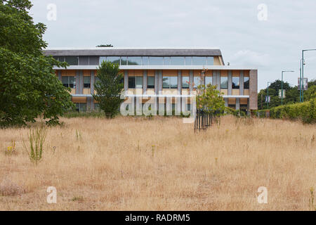 Rear entrance viewed from park during draught. The Enterprise Centre UEA, Norwich, United Kingdom. Architect: Architype Limited, 2015. - Stock Image