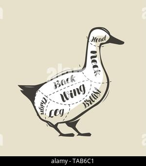 Duck meat cutting. Menu for restaurant or butcher shop. Vector - Stock Image