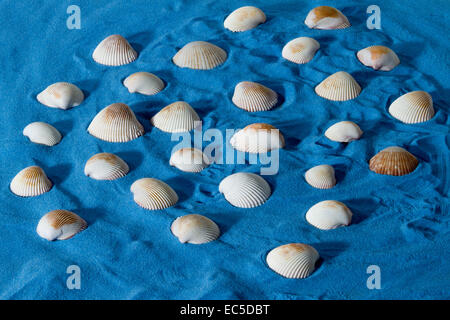 blue sand with shells - Stock Image