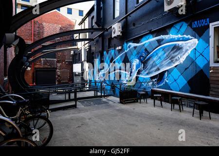 Street art on Hunter Street Newcastle, New South Wales, Australia. - Stock Image