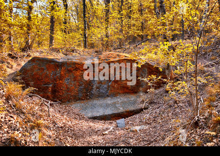erratic boulder with lichens on the surface in the woods of regional park of Campo dei Fiori Varese with autumn colors - Stock Image