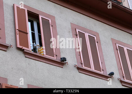 Details of old medieval style building. The building has beige concrete walls and the window frames are white and pink and made of wood. - Stock Image