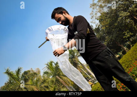 Young man entomologist collecting insects using an insect net or swiping net for his insect specimen collection during a bright summer - Stock Image