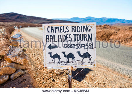 Morocco, SoussMassa (Sous-Massa-Draa), Ouarzazate Province. Hand-painted sign advertising camel riding in the Atlas - Stock Image
