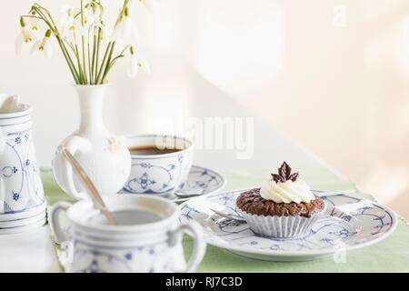 Schokomuffin auf einem Tisch, - Stock Image