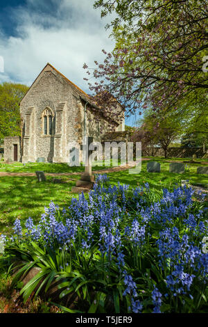 Spring afternoon at the Saxon church of St Julian's in Shoreham-by-Sea, West Sussex, England. - Stock Image