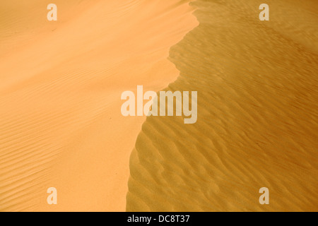 Sand dune in the Arabian desert, Dubai, United Arab Emirates - Stock Image
