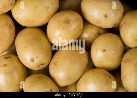 Raw potato background close up full frame. - Stock Image