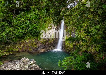 Salto de Doña Juana, (Doña Juana Falls), Toro Negro State Forest, Puerto Rico - Stock Image
