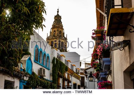 Narrow streets of the Old City, Cordoba, Cordoba Province, Andalusia, Spain. - Stock Image