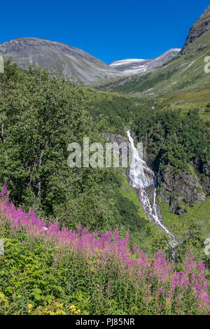 Norwegian scenic landscape with waterfall and fireweed. - Stock Image