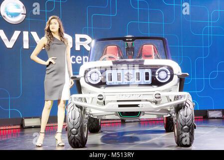 Greater Noida, India. 14th February 2018. Maruti Suzuki showcase their Concept e-Survivor car at Auto Expo 2018 - Stock Image