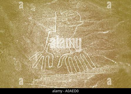 Nasca Lines Bird Symbol - Stock Image