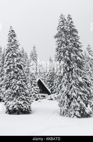 Winter resort Madonna Di Campiglio - Stock Image