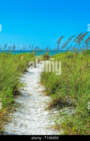 Tigertail beach at Marco Island - Stock Image