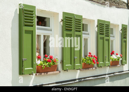 three window boxes with red flowers and green shutters - Stock Image