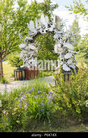 The Gateway to Fairbanks, Moose Antler Arch in Griffin Park downtown Fairbanks, Alaska. The arch is made up of more than 100 moose and caribou antlers collected from all over Interior Alaska and is the world's farthest north antler arch. - Stock Image