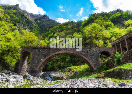 Stone bridge over small mountain river, green forest in background - Stock Image