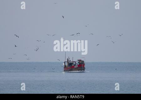 Hastings, East Sussex, UK. 05 Jan, 2019. UK Weather: A fishing boat heads into shore after a night out at sea in Hastings, East Sussex. Seagulls hover nearby. © Paul Lawrenson 2018, Photo Credit: Paul Lawrenson / Alamy Live News - Stock Image