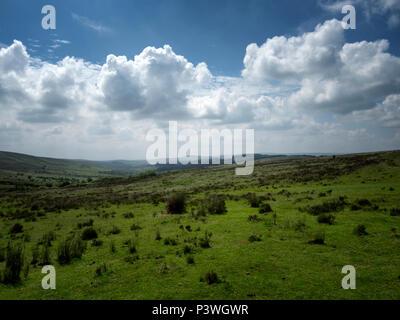 Dartmoor,National,Park,Dartmoor National Park,Devon,England,UK - Stock Image